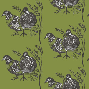 feeding pigeons moss green