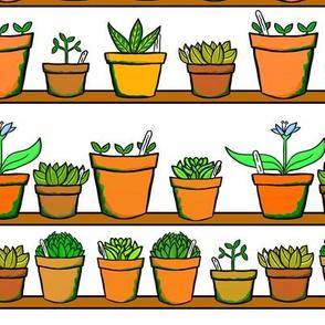 Green house Plant Pots - White