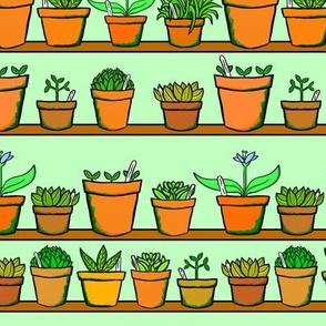 Green house Plant Pots - Green