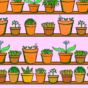 Green house Plant Pots - Pink