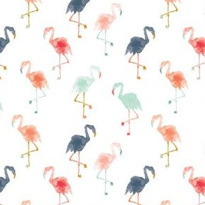 IBD Flamingos B