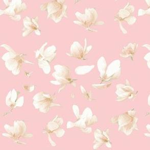 Tulip Magnolia (Carnation Pink)