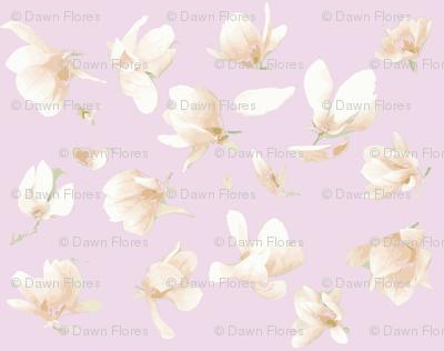 Tulip Magnolia (Pinky Purple)