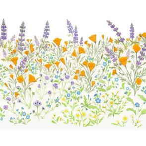 Wistful Wildflowers