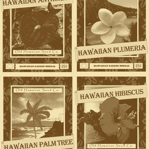 Hawaiian Gardening Seed Packets in Sand and Clay Colors