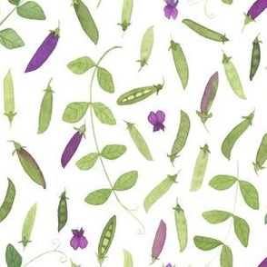 Watercolor Spring Peas