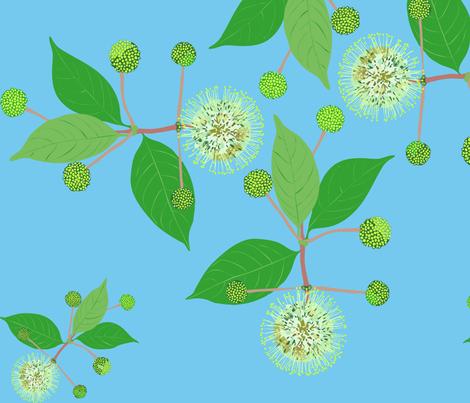 2941 Australian Buttonbush Blue Light fabric by jennieholtsbaumdesign on Spoonflower - custom fabric