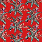 Tropical Birds Magnum Opus