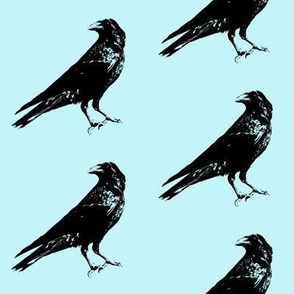 Crows on Pale Turquoise // Large