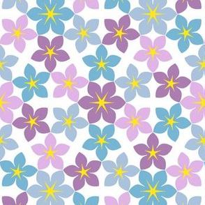 07473163 : U65 flowers 2x2 : summer pastels