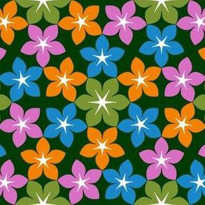 07473173 : U65 flowers 3 : flutterby