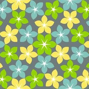 07473230 : U65 flowers 3 : fancy
