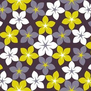 07473278 : U65 flowers 3 : dreamy