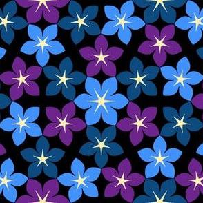 07473388 : U65 flowers 3 : bedtime