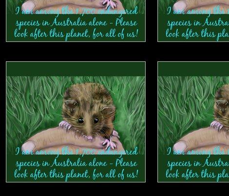 Rendangered-pygmy-possum-australian_ed_shop_preview