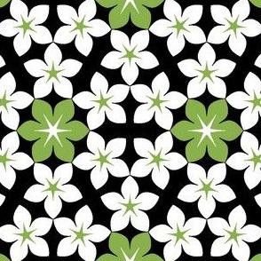 07473726 : U65 flowers 3 : sown
