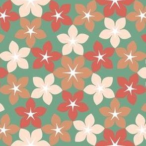 07473765 : U65 flowers 3 : arid