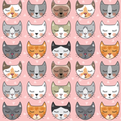 kitty-cat-faces on pink