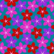 07474197 : U65 flowers 3 : mad