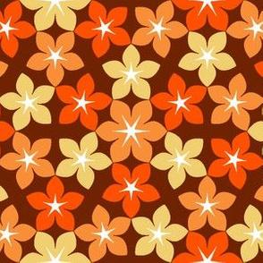 07474258 : U65 flowers 3 : pumpkin