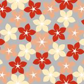 07474294 : U65 flowers 3 : best performance