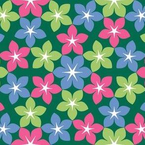 07474375 : U65 flowers 3 : get well soon