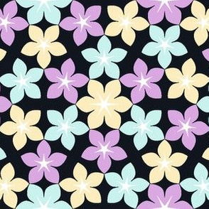 07474409 : U65 flowers 3 : starry