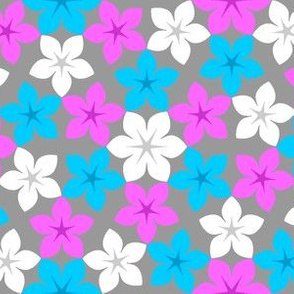 07474466 : U65 flowers 3 : bohemian