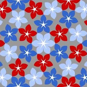 07474502 : U65 flowers 3 : herbal remedy