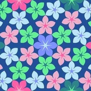 07474584 : U65 flowers 3 : summer blooms