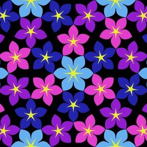 07474933 : U65 flowers 3 : bobpal