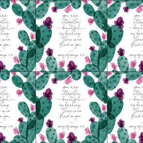 6 loveys: altogether beautiful cactus