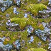 Rrrrrmossy-mountain-rocks_shop_thumb