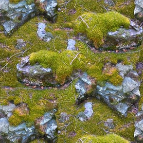 Mossy Mountain Rocks