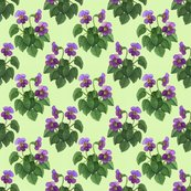Watercolor_wild_violets_purple_on_green_shop_thumb