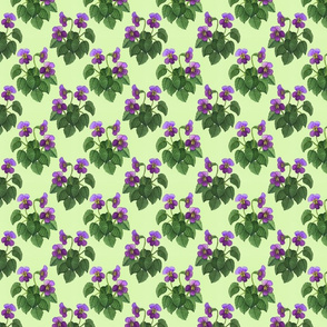 watercolor wild violets purple on green 4x4