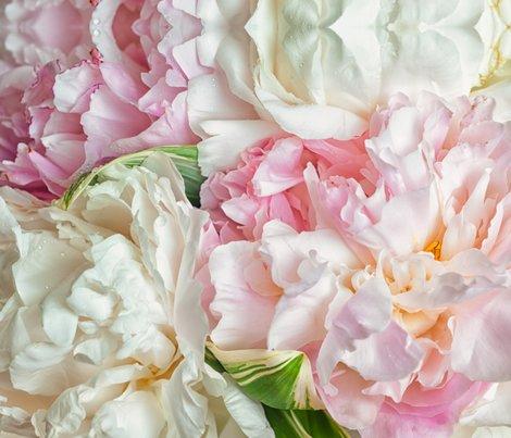 Rzina-zinchik_blooming-peonies_shop_preview