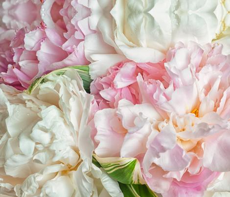 Blooming peonies fabric by zinchik on Spoonflower - custom fabric