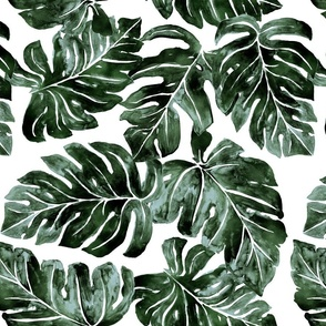 Jungle Monstera Leaves_deep