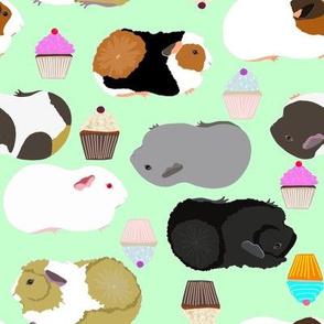 guinea pigs mint