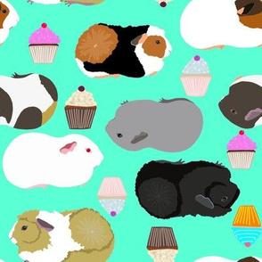 guinea pigs seafoam