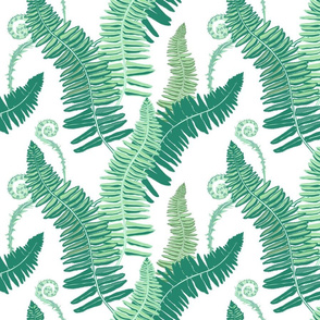 Native Ferns, Vintage Feel- on White