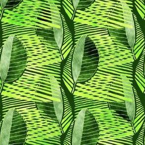 SAGE, Modern Leaf Energy, Green
