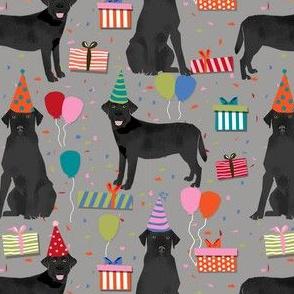 black lab birthday party dog breed labrador retriever grey