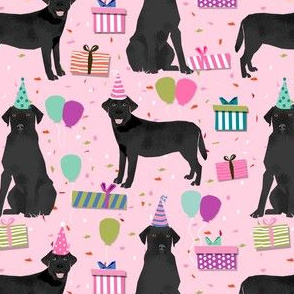 black lab birthday party dog breed labrador retriever pink