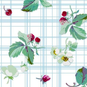 Strawberry Picnic Tartan aqua