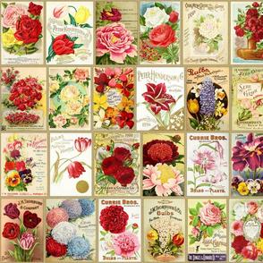 Vintage Seeds - B