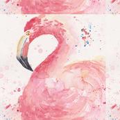 flamingosquare