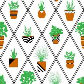 NYC-Window-Garden-Patterned-Pots