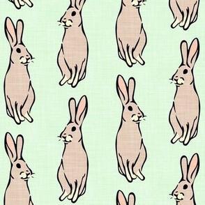 mint bunnies